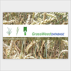 Grass Weed Database - Bayer Crop Science